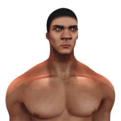 Akeruka_Aron_wrong_shape