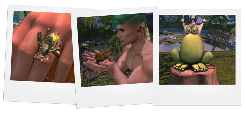 Frog Prince Hunt - 2 blog