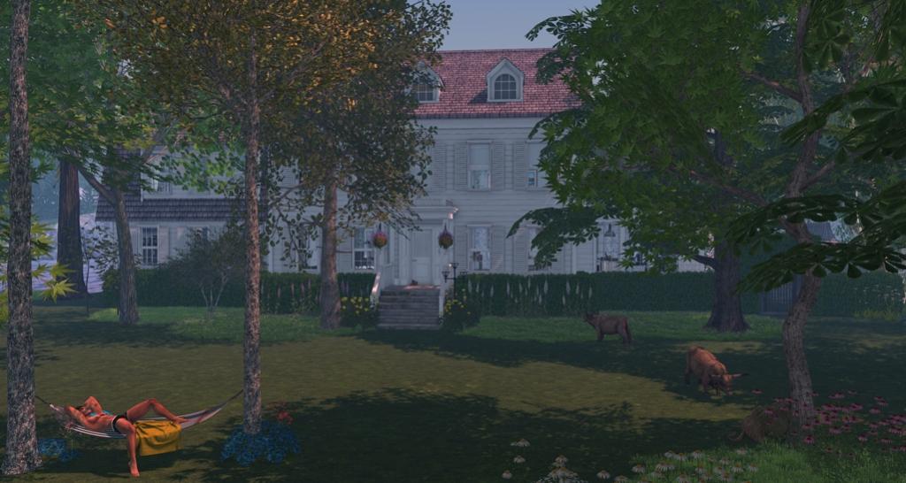 Castor House I blog